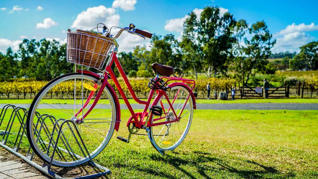 rowerowe piatki w rumi