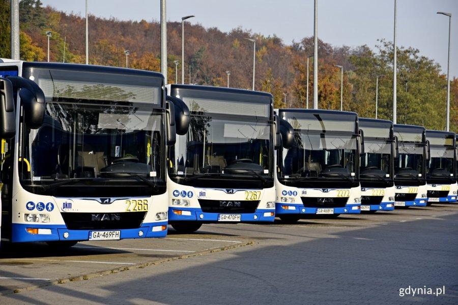 nowe autobusy zkm gdynia