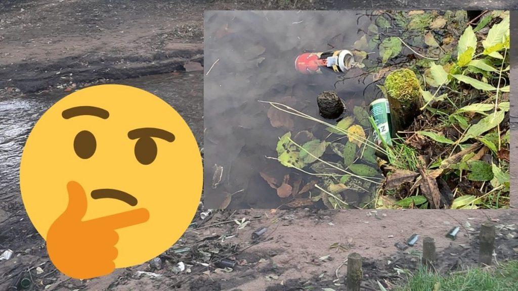 Park Starowiejski i śmieci w stawie