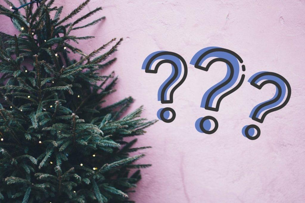 Co zrobić z choinką po świętach? Gdzie i do kiedy trzeba ją wyrzucić?