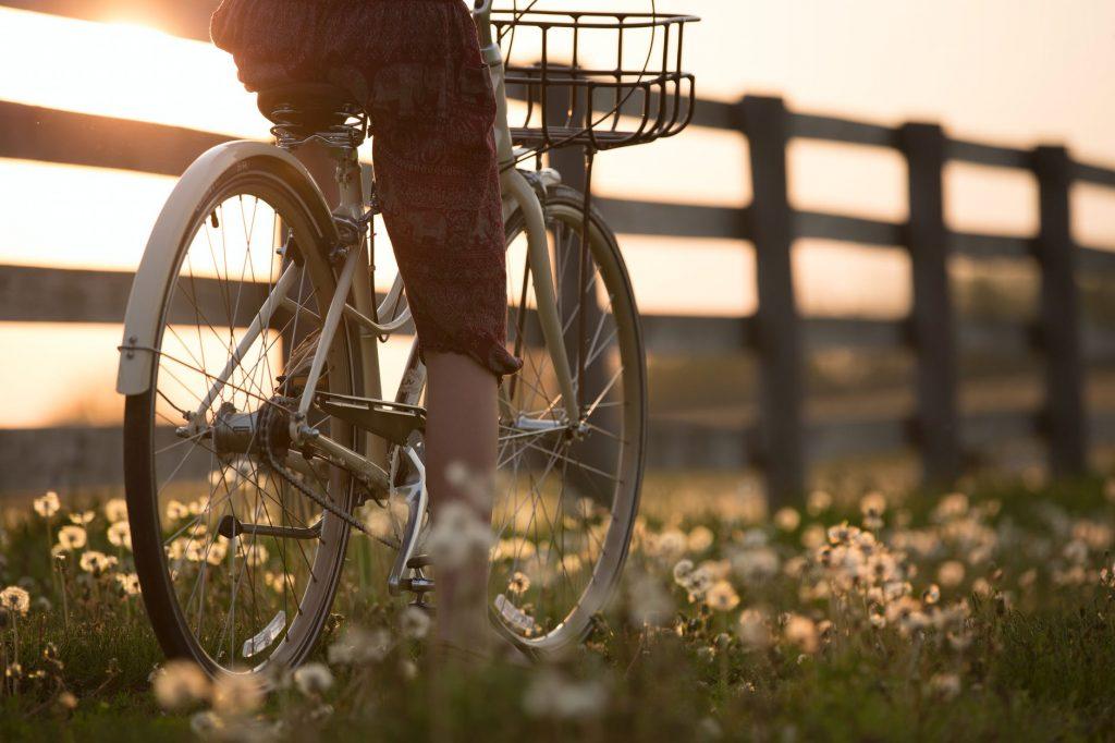 Kolejna wycieczka rowerowa z MDK Rumia!